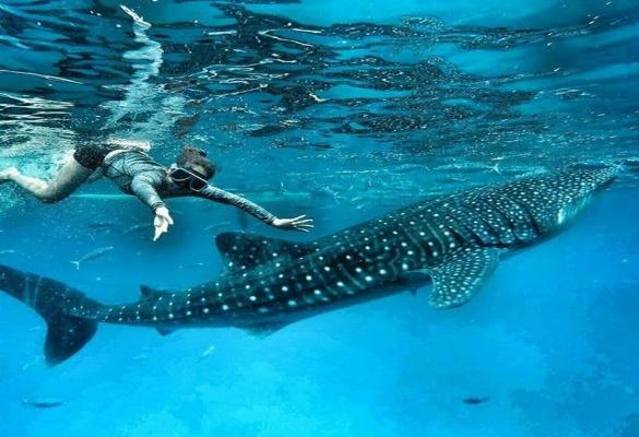 Bluewater Maribago-adventures_Sone